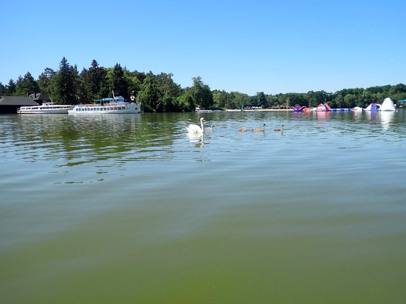 Machovo-jezero-015