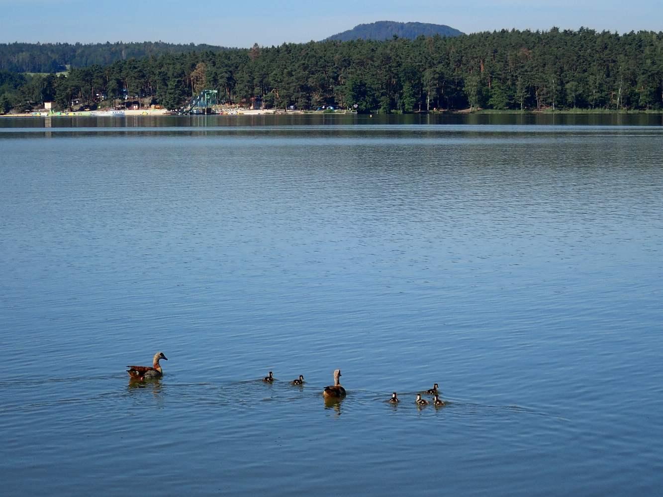 Machovo-jezero-025
