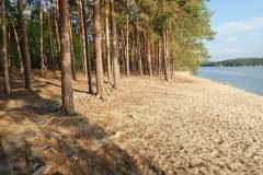 Máchovo-jezero-2019-037